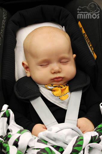 Mimos Kudde Storlek P F 246 R Babyskydd Samt Andra Smalare Enheter